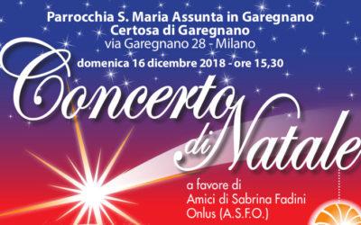Concerto di Natale Domenica 16 dicembre ore 15,30